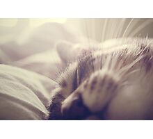 _ sleeping beauty _ Photographic Print