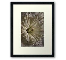 June's Daffodil Framed Print