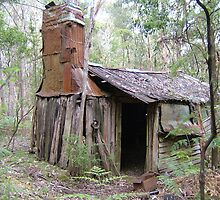 Tonks Hut   Marysville State Forest. by Jo-AnneKasch