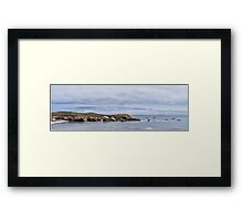 Pelican Race Framed Print