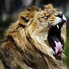 King of the Jungle yeeeaaaarrrrgh by Yampimon