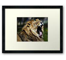 King of the Jungle yeeeaaaarrrrgh Framed Print