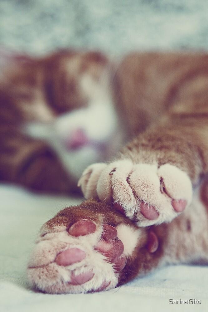 Sleeping Kitty by SarinaGito