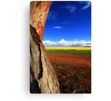 Colours Of Australia Canvas Print