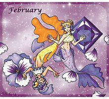 February Zodiac Photographic Print