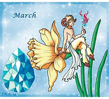 March Zodiac Photographic Print