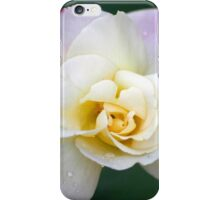 Pale double delight rose iPhone Case/Skin