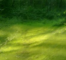 impressionistic fairy tale glade by heartwork