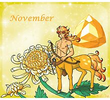 November Zodiac Photographic Print