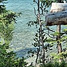 Pristine Waters of Jenny Lake  by Kenneth Massara