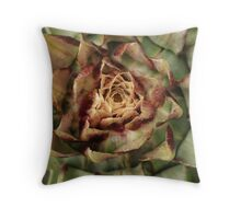 Globe artichokes in bloom Throw Pillow