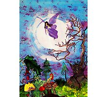 Fae at Play Photographic Print