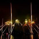 Fireworks 28 by David Freeman