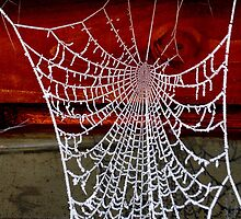 Icicles Spiderweb by Julesrules