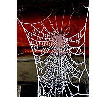 Icicles Spiderweb Photographic Print