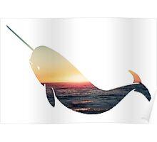 Narwhal - Ocean Poster