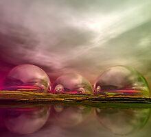 Land of the Lost by Sandra Bauser Digital Art