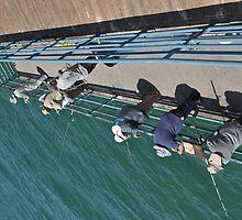 """ Fishing in Australia "" by CanyonWind"