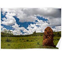 Termite Hill Poster