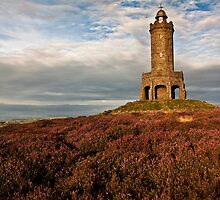Darwen Tower in late summer by Shaun Whiteman