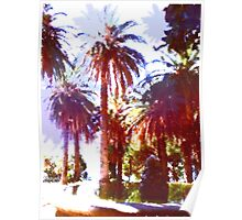 Tropical Palm Trees, beach Poster