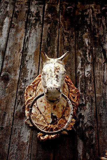 Horse Head Knocker  by Sophia Pagan