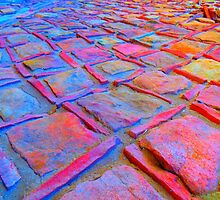 Square Stones Pathway Number 2 by Mike Solomonson