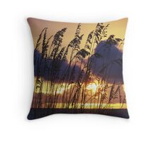 A perfect 10 Throw Pillow