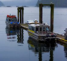 Dockside in Tofino by EchoNorth