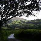 Brecon Beacons by Jan Carlton