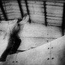 Creep by Nicola Smith