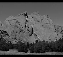 When Camels Kiss - Garden of the Gods (City) by Limajo