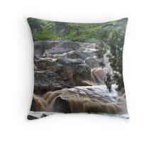 Mannum Waterfalls Throw Pillow