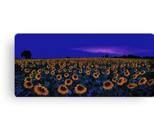 ode  to vincent Canvas Print