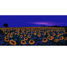 ode  to vincent Photographic Print