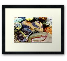 rock me by the sea Framed Print