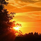 Orange Sunrise by Susan Blevins