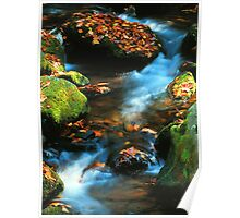 Mountain stream,Roaring Fork Poster
