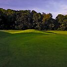 listowel golf club - 008 by Paul Woods