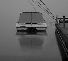 silently awaiting the day - B&W by JimSanders