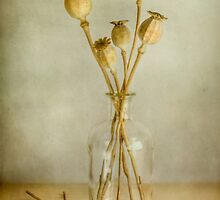 Summer harvests by Mandy Disher