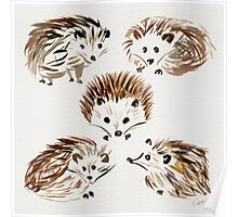 Hedgehogs Poster