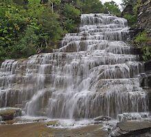Hector Falls by Jill Vadala