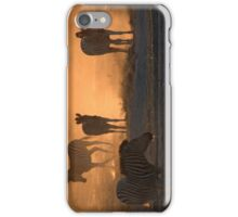 Backlit Zebras iPhone Case/Skin