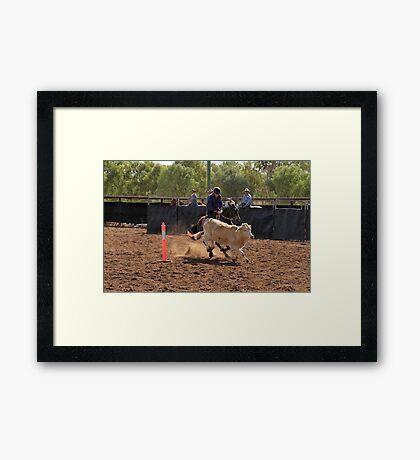 Glenn Powell - Comet Campdraft Framed Print