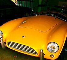 Peeking Car by Dr. Charles Taylor