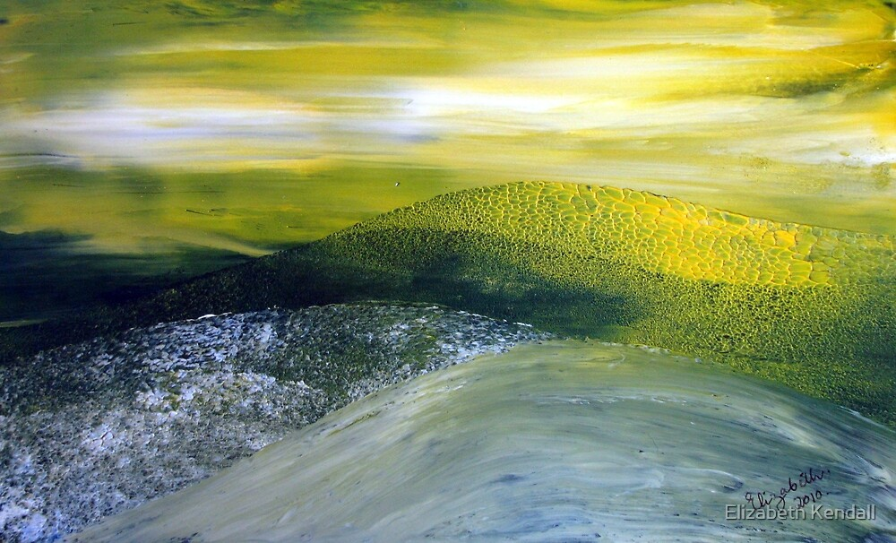 Yellow blanket of canola by Elizabeth Kendall