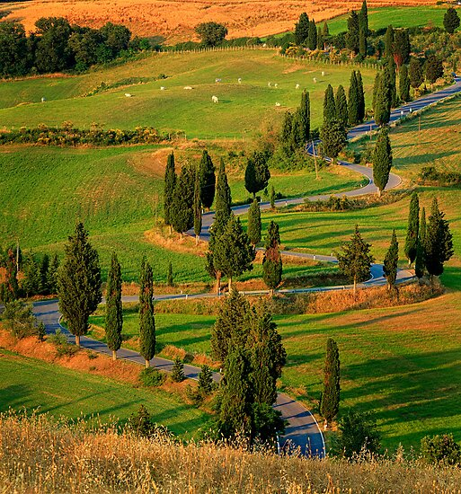 Tuscan Road by Inge Johnsson