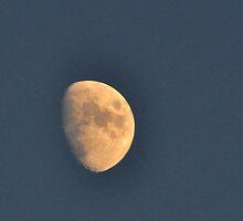 Waxing Moon by Nancy Barrett