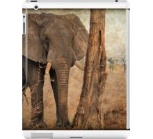 ALL IN AUTUM - WHEN IS SPRING? - THE AFRICAN ELEPHANT -Loxodonta Africana iPad Case/Skin